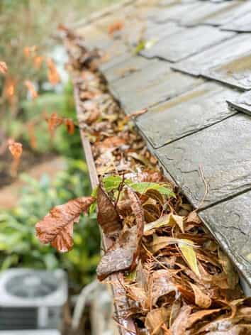 gutter cleaning