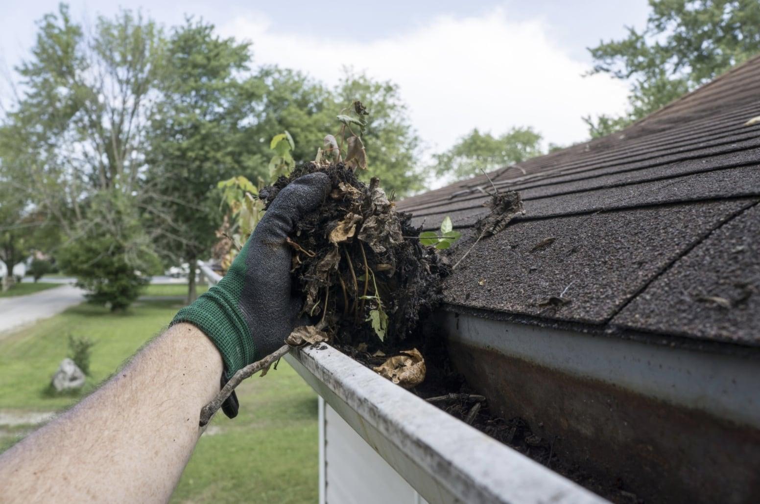 Hand digging debris out of gutter